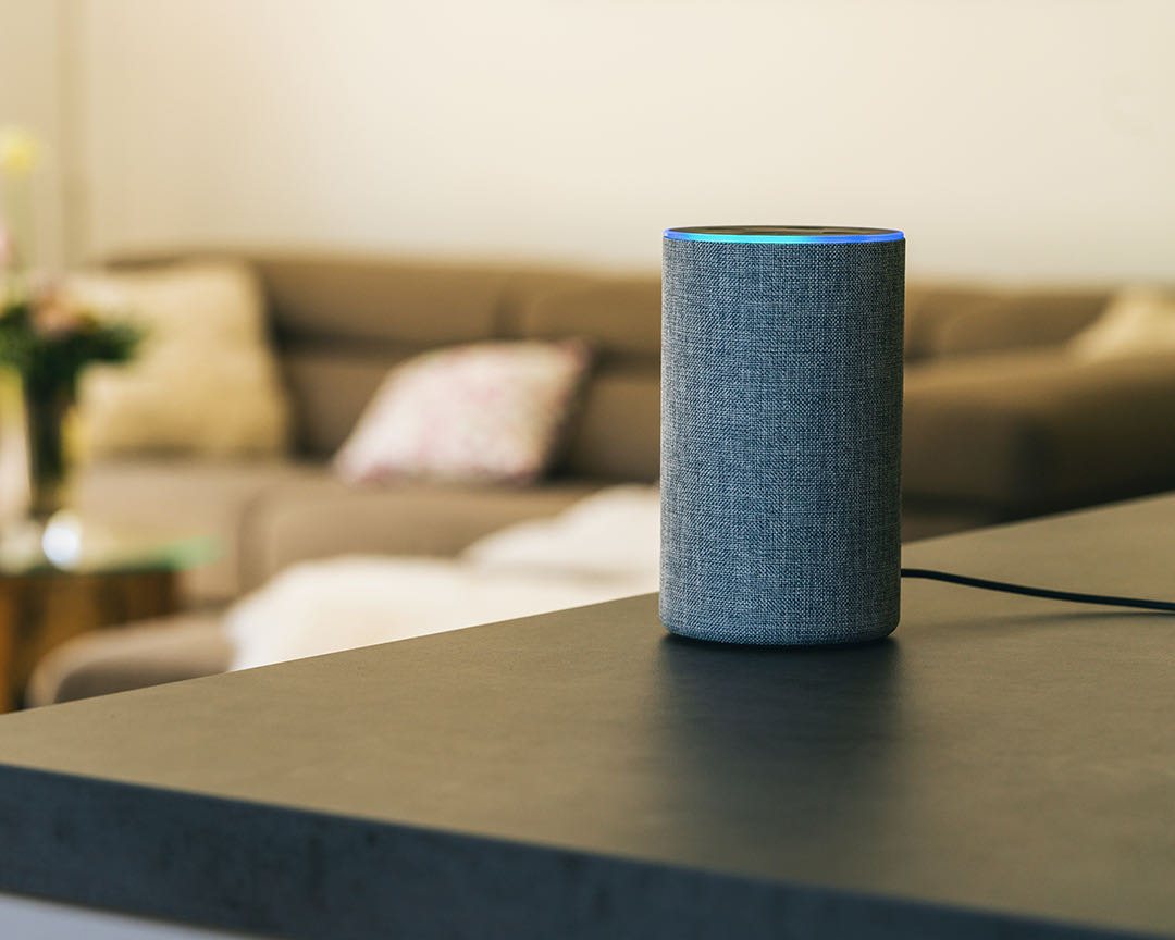Use alexa for voice banking
